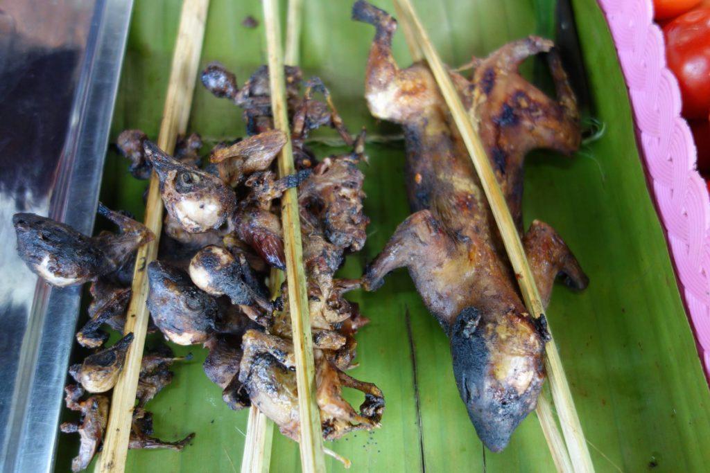 Grilowana kuna na nocnym markecie w Luang Namtha