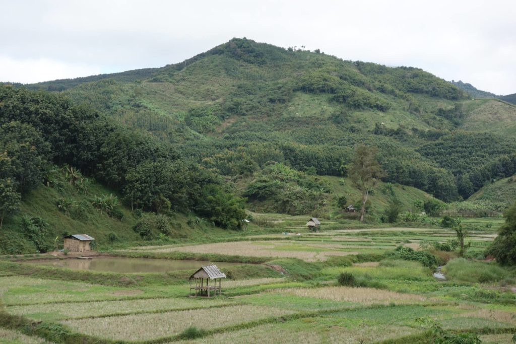 Dolina Luang Namtha