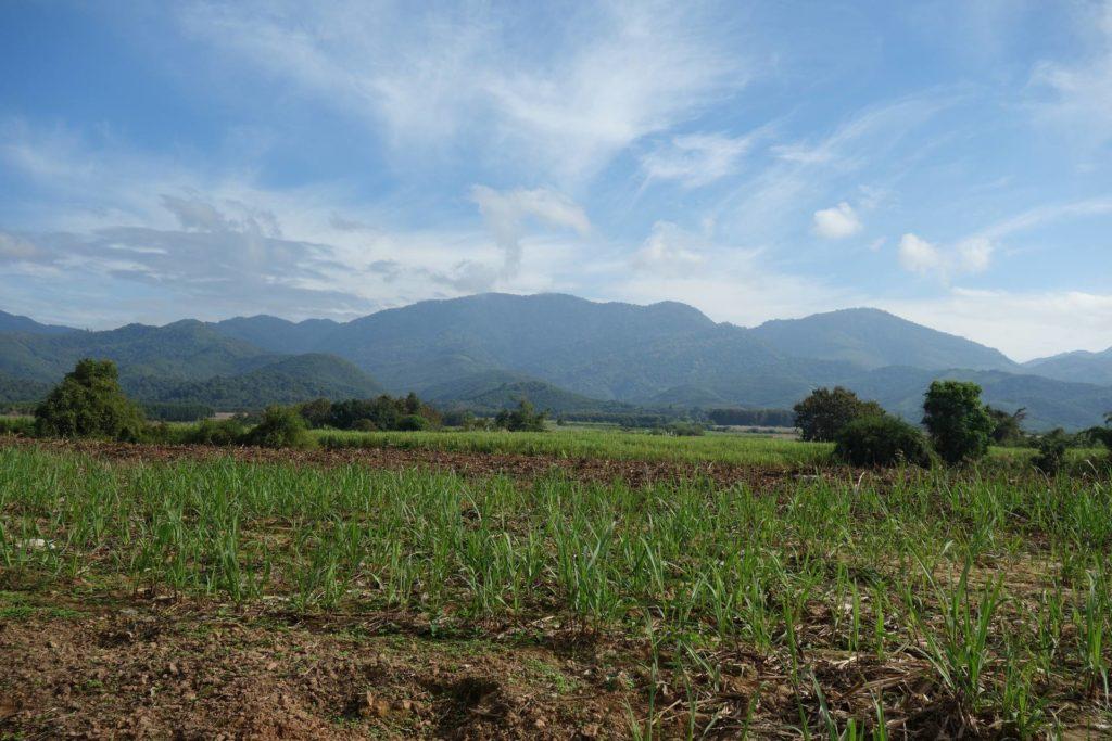 okolice Muang Sing