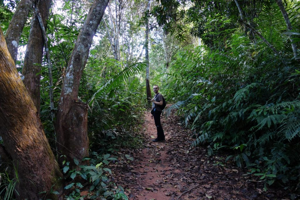 Szlak w rezerwacie Nam Ha Luang Namtha