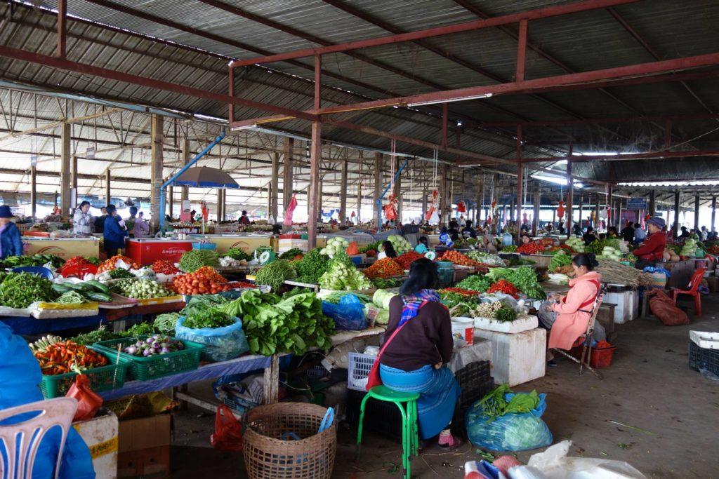 targ w Muang Sing